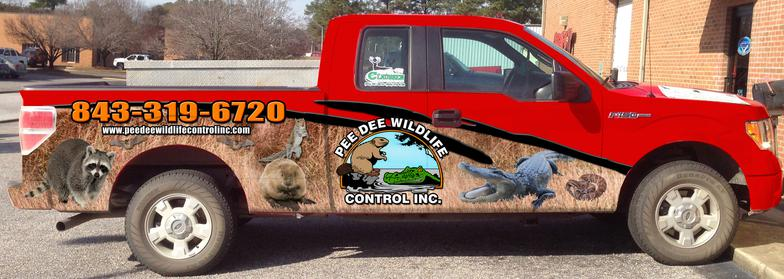 dead animal removal Florence SC